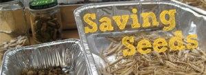 saving_seeds_header