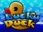 Luck-Duck